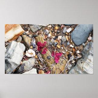 Beachcomber Collage Poster