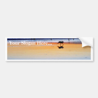 Beaches Point Loma Sunsets Bumper Stickers