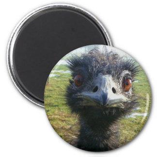 Beady Eyes EMU 6 Cm Round Magnet