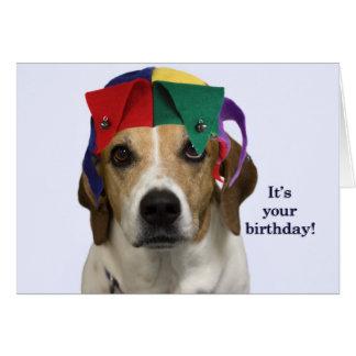 beagle birthday cards  invitations  zazzle.au, Birthday card