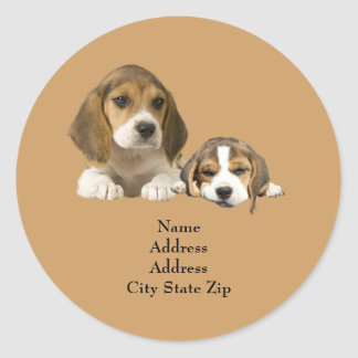 Beagle Buddies Address Label Round Sticker