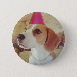 Beagle button