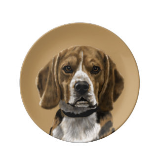 Beagle called Jones Plate