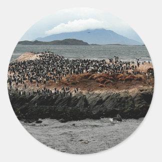 Beagle Channel Classic Round Sticker
