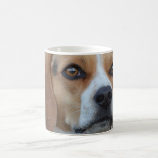 Beagle Close Up Coffee Mug