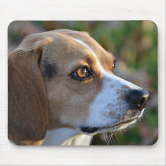Beagle Determination Mouse Pad