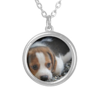 Beagle Dog Close Up Silver Plated Necklace