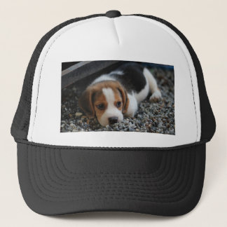 Beagle Dog Close Up Trucker Hat
