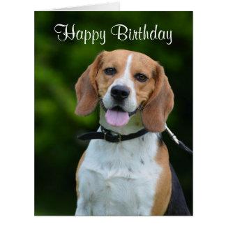 Beagle dog lovers cute custom birthday card