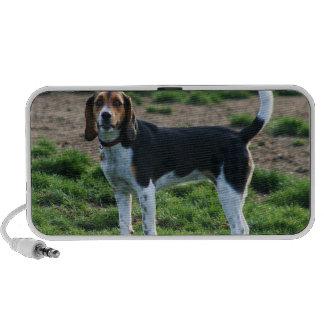 Beagle doodle speaker