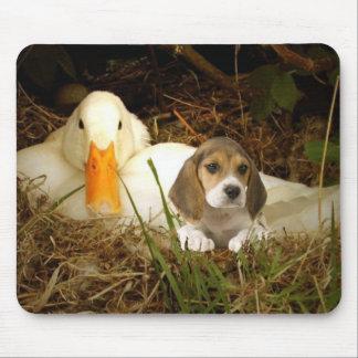 Beagle & Duck Mousepad