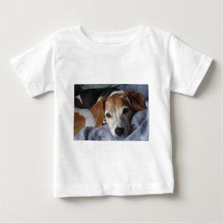 Beagle-Harrier Dog Baby T-Shirt