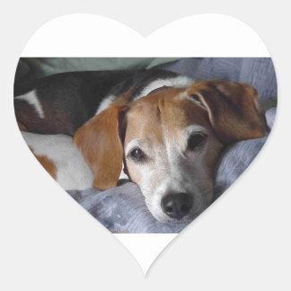 Beagle-Harrier Dog Heart Sticker
