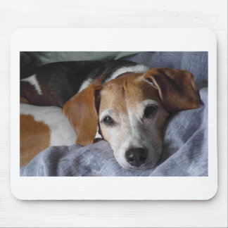 Beagle-Harrier Dog Mouse Pad