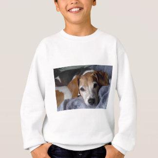 Beagle-Harrier Dog Sweatshirt