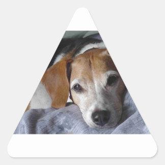 Beagle-Harrier Dog Triangle Sticker