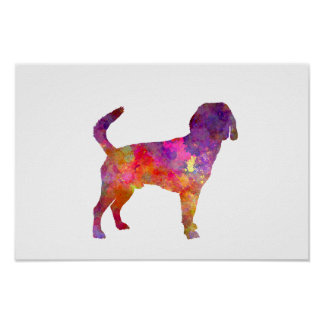 Beagle Harrier in watercolor Poster