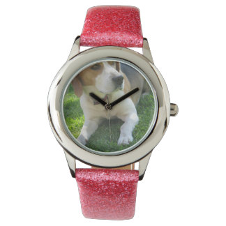 Beagle Hound Dog Watch