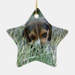 Beagle in the grass ceramic star decoration