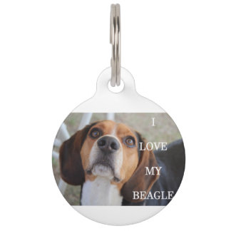 beagle love w pic black red white pet name tag