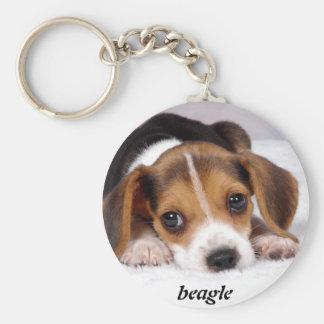 beagle-puppies-wallpaper-11.jpg, beagle key ring