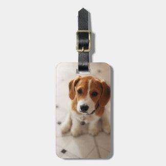 Beagle Puppy 2 Luggage Tag
