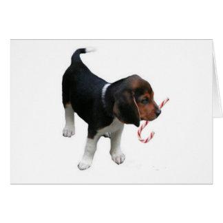 Beagle Puppy Candy Cane Christmas Card