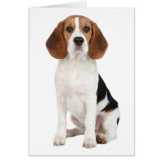 Beagle Puppy Dog Blank Note Card