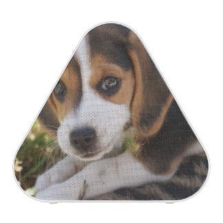 Beagle Puppy Dog Bluetooth Speaker