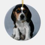 Beagle Puppy Dog Photo Christmas Tree Ornaments