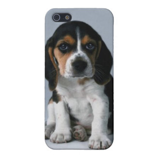 Beagle Puppy Dog Photo iPhone 5 Case