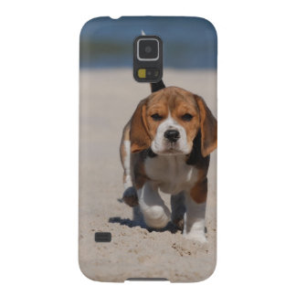 Beagle puppy galaxy s5 cases