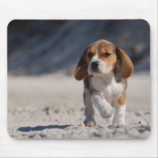 Beagle puppy mouse pad