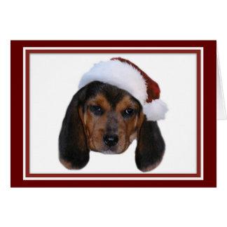 Beagle Puppy With Santa Hat Christmas Card