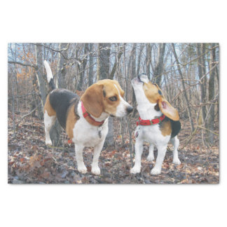 Beagle Pups in the Woods Tissue Paper