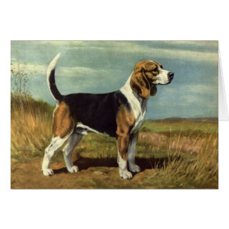 Beagle Vintage Greeting Card