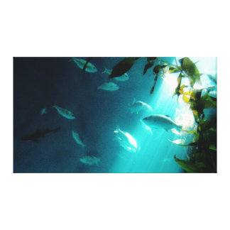 Beam of Light Underwater Fish Swimming Canvas Print