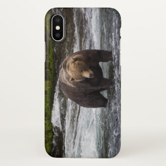 Bear 68 Glossy Phone Case