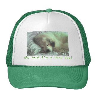Bear asleep mesh hats