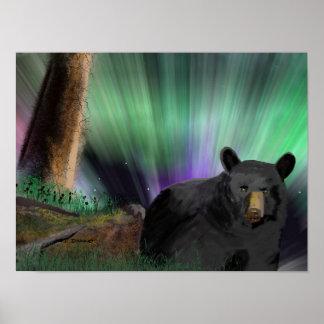 bear aurora poster