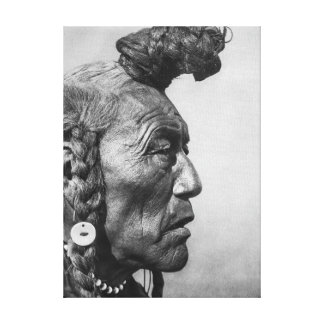 Bear Bull A Blackfoot Warrior Canvas Art