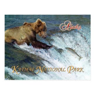 Bear catching salmon, Katmai National Park, AK Postcard