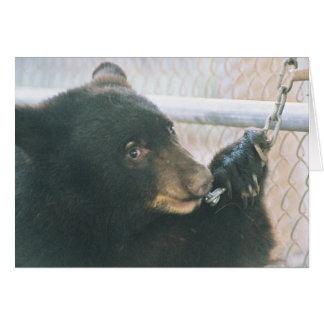 Bear Cub Note Card - Chain