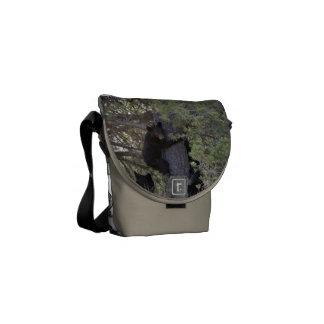 Bear Cubs Animal Print Design Destiny's Destiny Courier Bag
