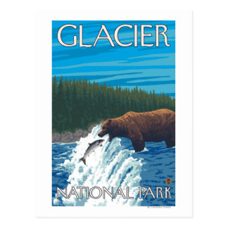 Bear Fishing in River - Glacier National Park, Postcard