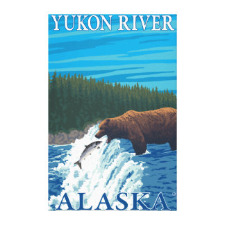 Bear Fishing in River - Yukon River, Alaska Canvas Print