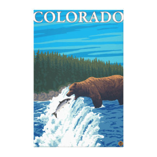 Bear FishingColorado Gallery Wrapped Canvas
