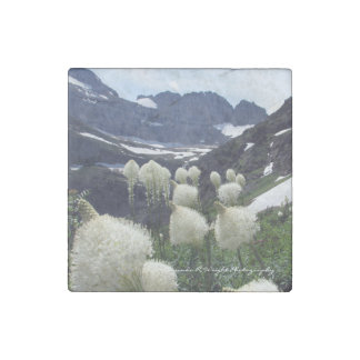 Bear Grass Magnet