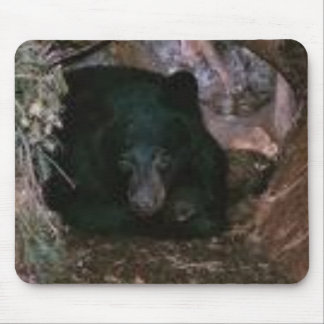 bear in a hole mouse pad