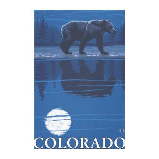 Bear in MoonlightColorado Gallery Wrap Canvas